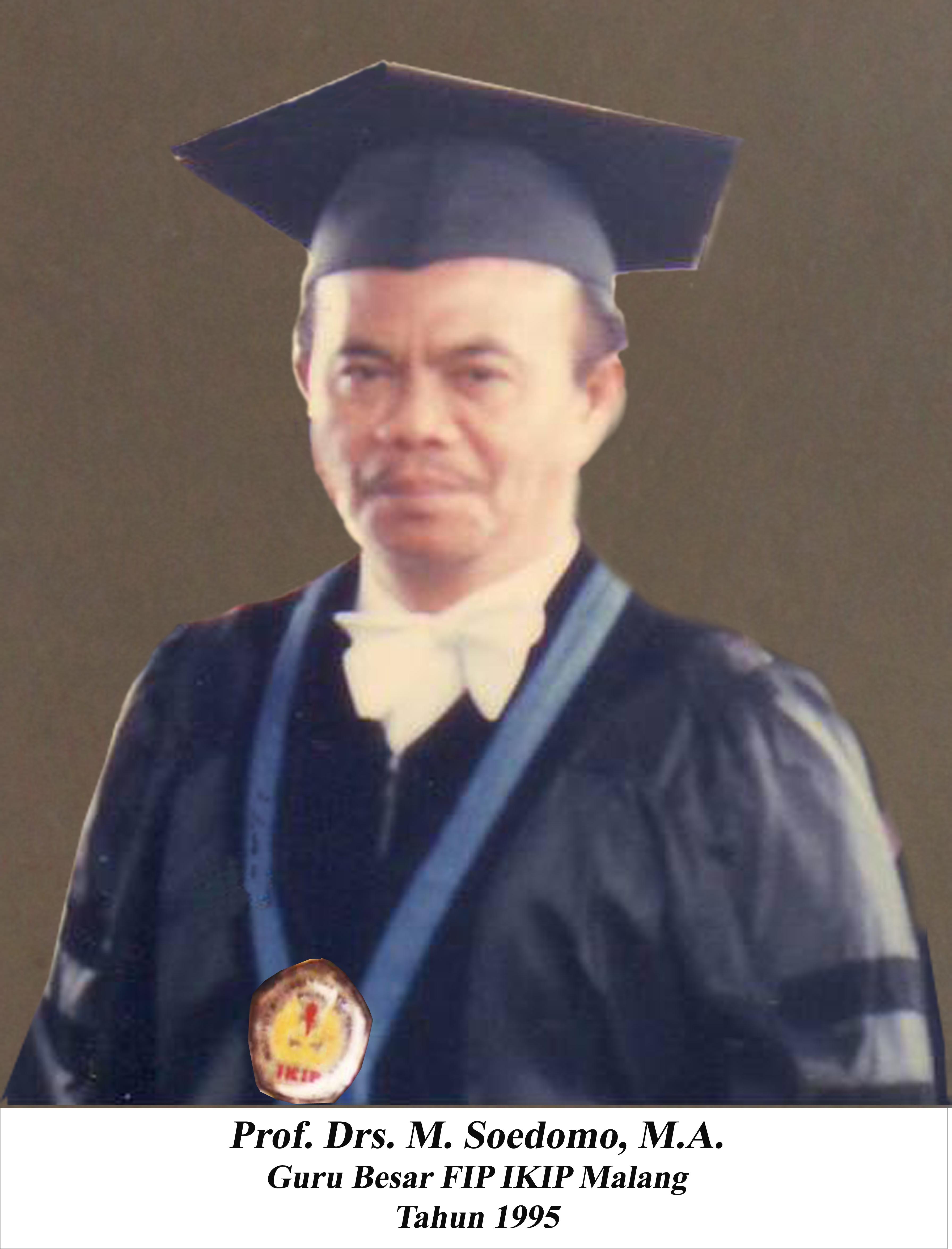 Prof. H.M. Soedomo